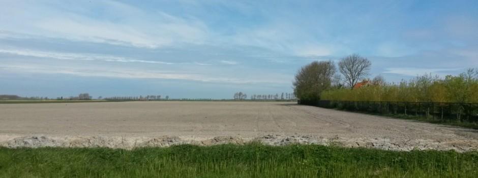 Uitzicht in de polder